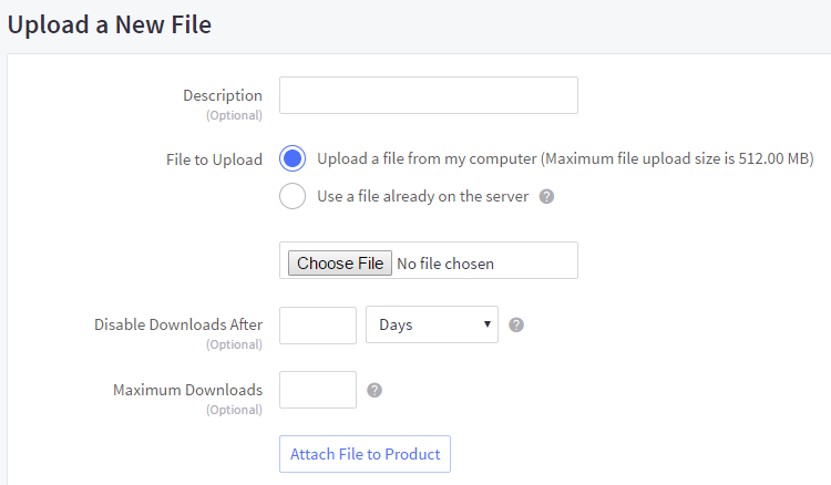 Upload a New File section